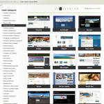 šablony webových stránek
